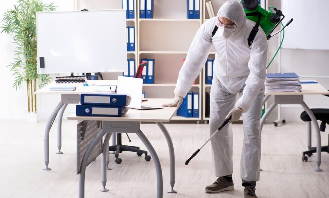 Brisbane Commercial Pest Control