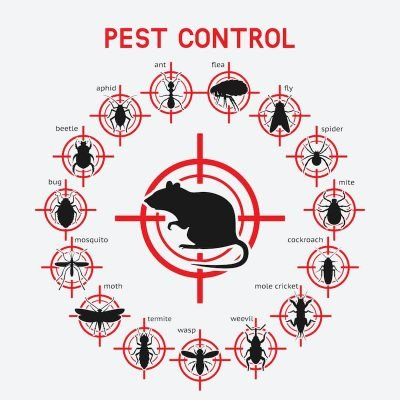 North Brisbane Pest Control