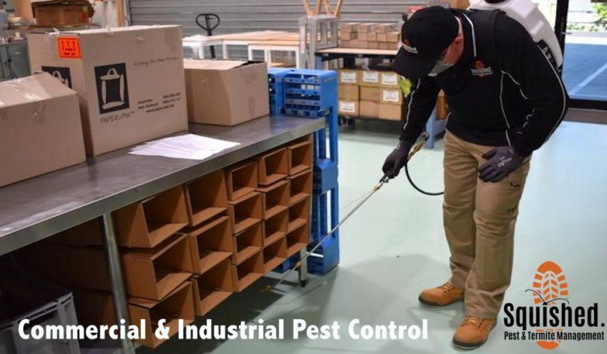 Commercial Pest Control North Brisbane